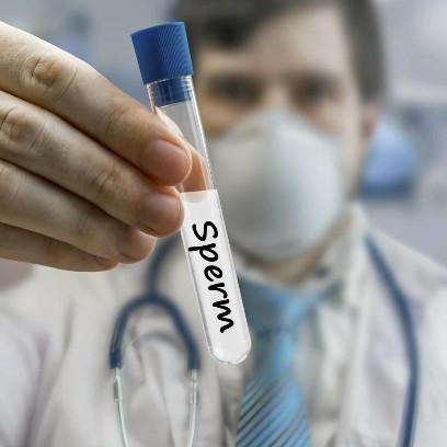 Обследование на антиспермальные антитела